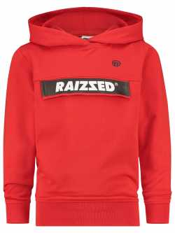 Sweater Raizzed